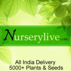 NurseryLive - Get Free Garden Kits in Lucky Draw this Father's Day