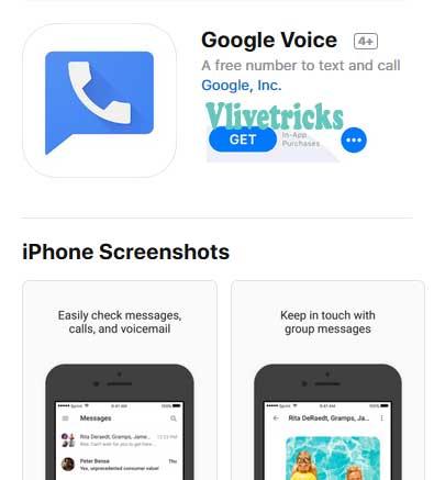 install-google-voice