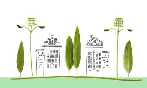 free plant seeds